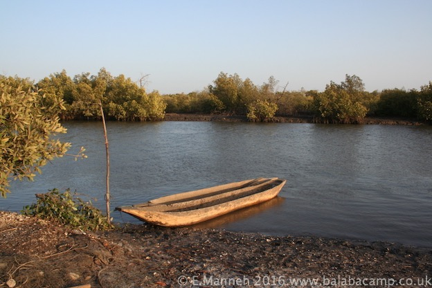 Allahein River, Gambia