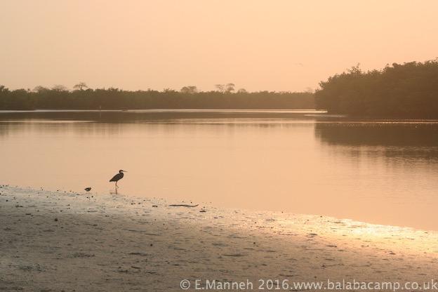 Sunrise over the Allahein River, Kartong